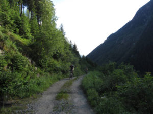 Schotterwweg oberhalb der Breitlahner Alm