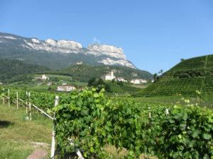 Schloss Korb - Im Hintergrund der Gampenpass