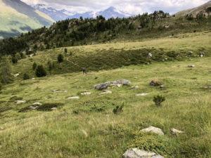 Radtreff Transalp 2018 IMG_1298